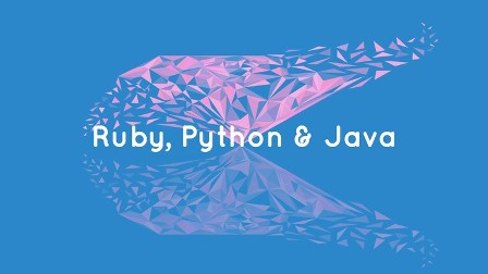 the complete guide to ruby, python, and java programming